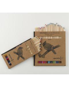 Spectrum Colour Pencils Eco Boxes